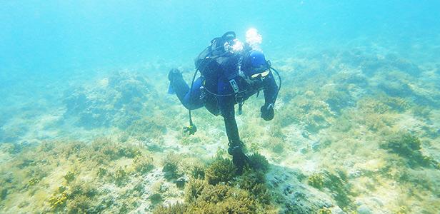 Centrum potápění Amers - Pakoštane 06. 2011 - foto 3