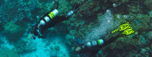 Centrum potápění Amers - kurz Nitrox Diver