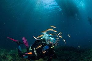 Sardinie potápění s Amersem