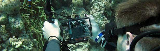 Kurz podvodního fotografování
